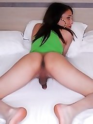Erotic Shemale Pics